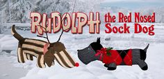 DIY Rudolph the Red Nosed Sock Dog - FYI+
