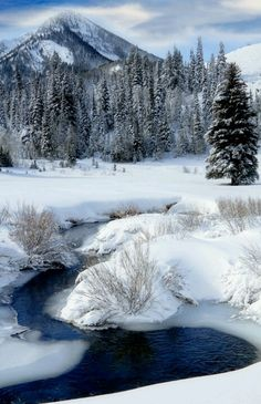Beautiful fallen snow with meandering stream