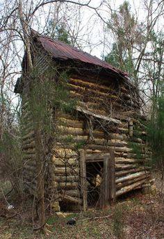 old falling down log cabin in the woods