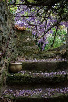 Ménerbes in Provence, France