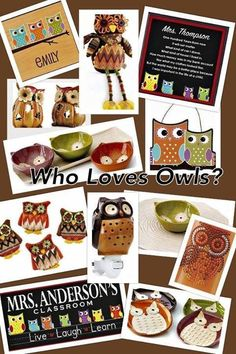 Whooooooooo Loves OWLS Celebrating Home Has Lots Of Owl Items New