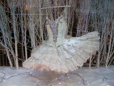 Paris shop window, ballet dress
