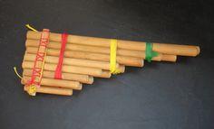 mostra de Instrumentos Musicais Tradicionais Emília Biancardi              .