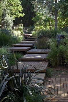 .wooden steps