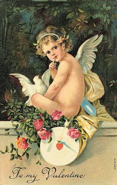 Cupid and Dove