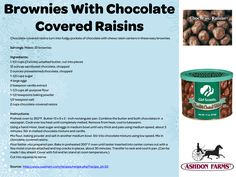 2013 Fall Product Sale Bonus Recipe - Brownies with Chocolate Covered Raisins!
