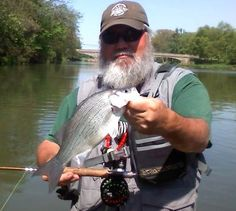 white bass on Portage river 2014