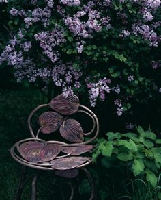 Just what I need--a  hosta chair!
