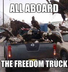 Freedom truck! 'MERICA!