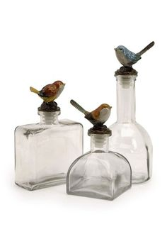 Maco Bird Bottles - Set of 3 on HauteLook