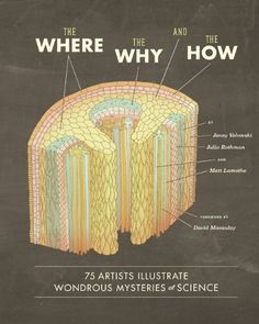 The Where, the Why, and the How: 75 Artists Illustrate Wondrous Mysteries of Science by Matt Lamothe,http://www.amazon.com/dp/1452108226/ref=cm_sw_r_pi_dp_6eF3sb014GEEDHP3