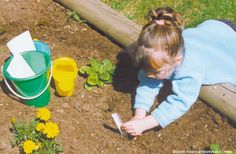 If you have the space, an outdoor garden is the perfect way to introduce responsibility and the wonder of growing things to your classroom. Children can help plant, monitor the growth of their garden, and observe insects, flowers, seeds and soil up close!