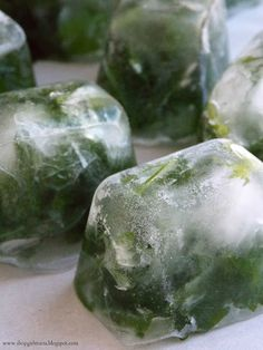 Freeze fresh herbs in ice cubes---they will last for months, and then just thaw when ready to use. #herbs #foodstorage
