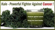 Kale - Powerful Fighter Against Cancer !