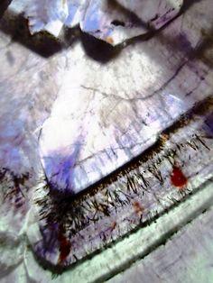 Anatomy of an AURALITE-23 Crystal