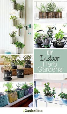 DIY Indoor Herb Gardens • Great Ideas & Tutorials from http://www.thegardenglove.com/
