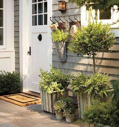 front door and porch decorating with plants