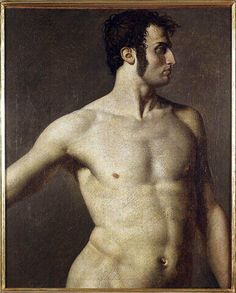 Male torso - Jean Auguste Dominique Ingres