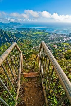 Haiku Stairs - view from the top