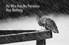 He who has no patience,has nothing