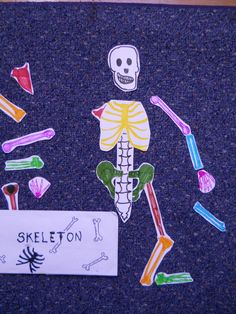 Let's pull out a science manipulative today. This was a VERY simple rendering of a skeleton. The backs of the pieces had the medical name and the more common name of the bone. I would just have them piece the skeleton together every so often and then check their work.