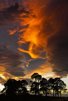 Sometimes it's all about the SKY! | Flickr - Photo Sharing!