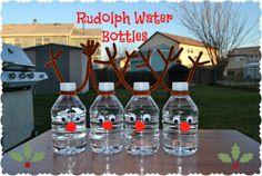 Reindeer water bottles - http://runeatplayblog.com