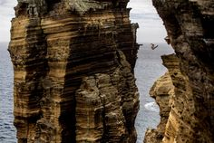 Orlando Duque of Colombia dives 95 feet off a rock monolith during the first round of the Red Bull Cliff Diving World Series at Islet Vila Franca do Campo in Azores, Portugal on July 20, 2012.