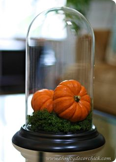 Decorating with pumpkins (and hundreds of other #fall ideas!)