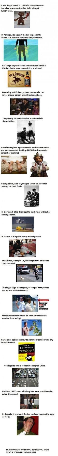 .weird random facts