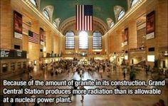 Architecture weird fact