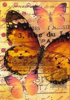 Orange Butterflies - mixed media