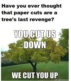 The trees will cut you