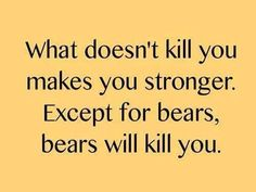 What doesn't kill you makes you stronger.  Except for bears, bears will kill you. funni stuff, laugh, bears, true, kill, humor, smile, quot, thing