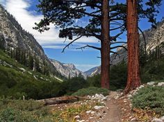 Sequoia & Kings Canyon National Park, California
