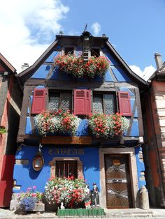 Window boxes balconies and porch fronts on pinterest for Container alsace