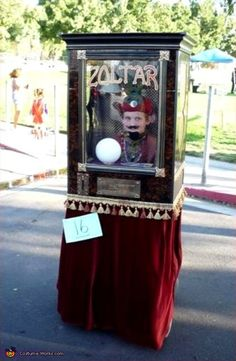 Zoltar - Homemade costumes for boys