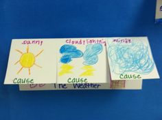 animal adaptations, thunder rose, 1st grade