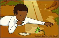 George Washington Carver :: Food Collage