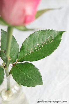secret message on rose leaf. Love this!
