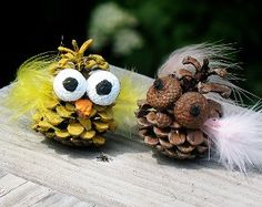 Silly Owl Pine Cone Craft | http://AllFreeKidsCrafts...