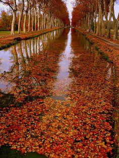 Autumn, Canal de Garonne à Montech (31) , France, by montestier, via Flickr