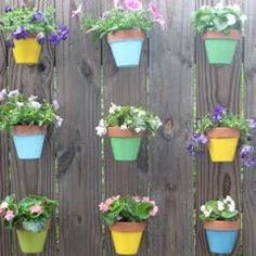 Hanging Flowers on a Fence