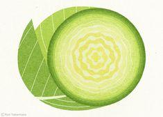 Cabbage by Ryo Takemasa.