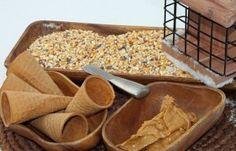 How to Make Bird Feeder Cones