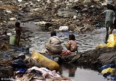 Under the poverty line: Indian slum dwellers collect water for their homes from a sewage drain at Dharavi