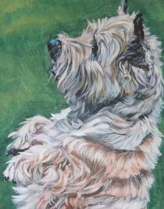 cairn terrier by LA Shepard