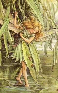 "The Willow Fairy - ""Faeries, come take me out of this dull world, For I would ride with you upon the wind, Run on the top of the dishevelled tide, And dance upon the mountains like a flame"". ~William Butler Yeats, ""The Land of Heart's Desire,"" 1894"