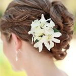 #weddingplanning. You'll find lots of beautiful Wedding Hair Accessories at www.usabride.com/...