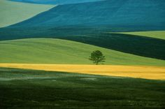 Franco Fontana - I would love to stitch this